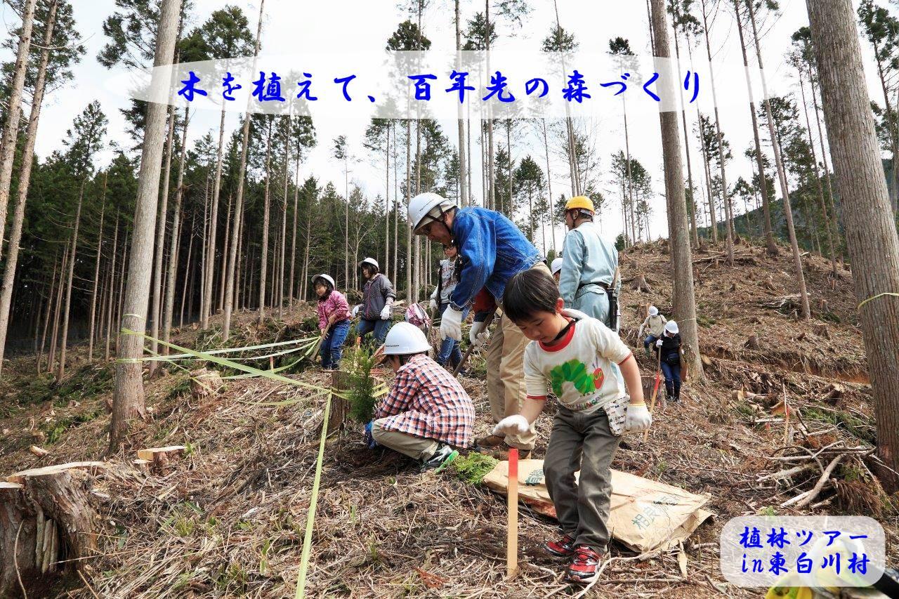 天然木の家に興味のある方必見!<BR>植林ツアー2017 in 東白川村